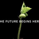 日産化学 2021年1Q決算を徹底解説! さとり世代の株日記 資産運用 株 投資 資産形成 株式投資